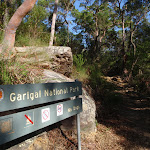 Entering Garigal National Park (130303)