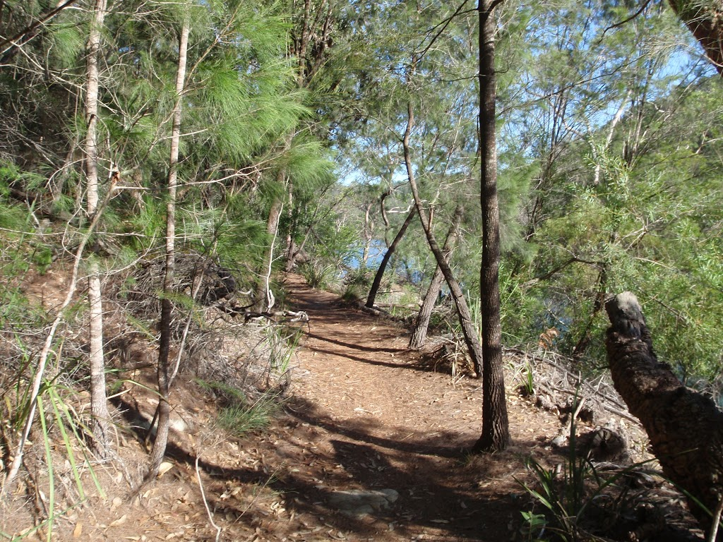Two creeks track in Little Diggers Park