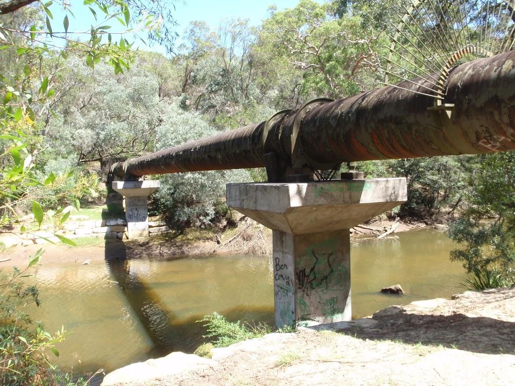 Crossing under the pipe bridge