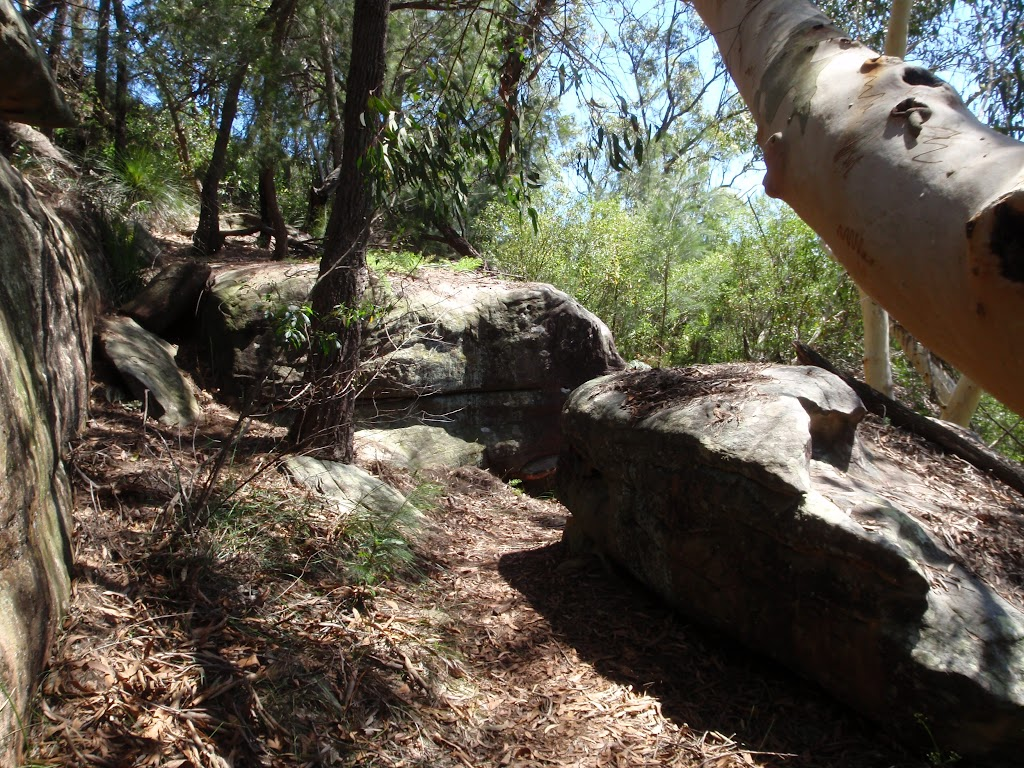 Rocks on the Casuarina track (131659)