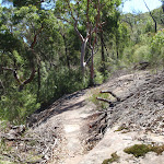 Rocky outcrop on Casuarina track (131920)