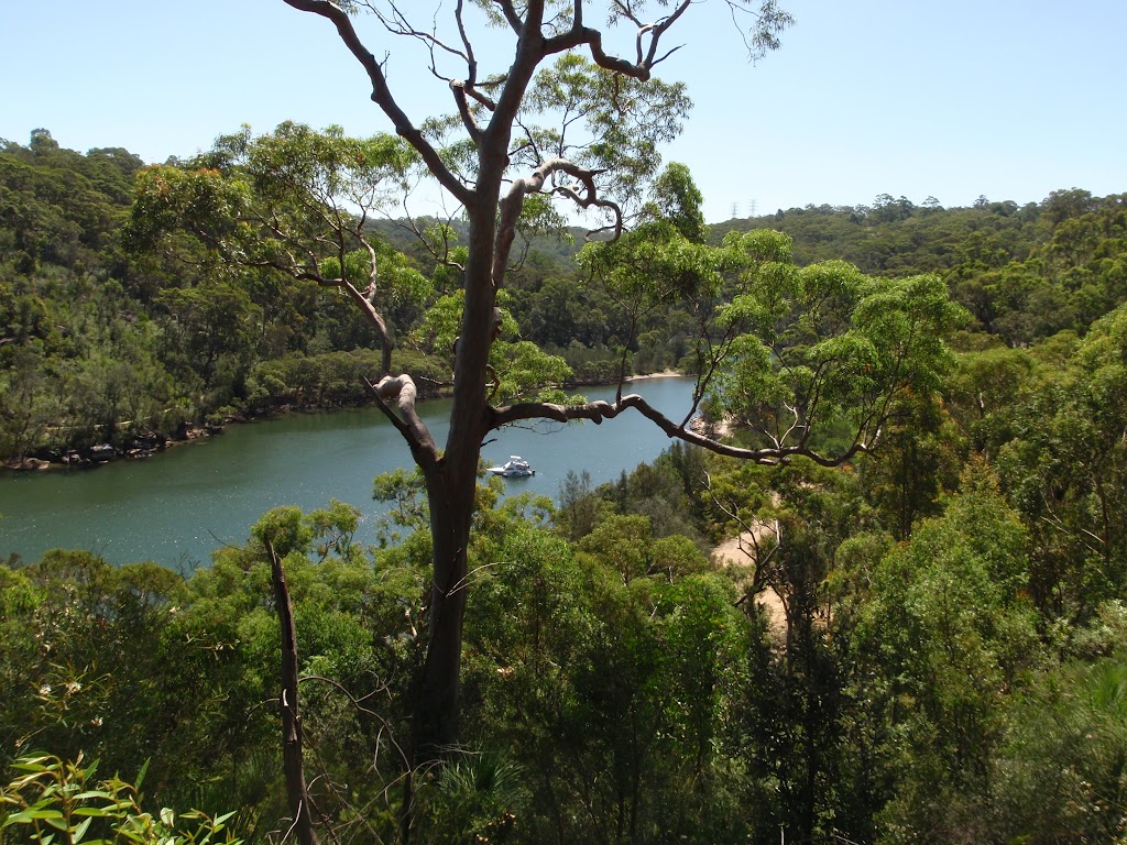 View of Middle Harbour from Casuarina Track