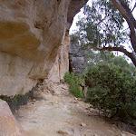 Collier's Causeway under cliffs (13402)