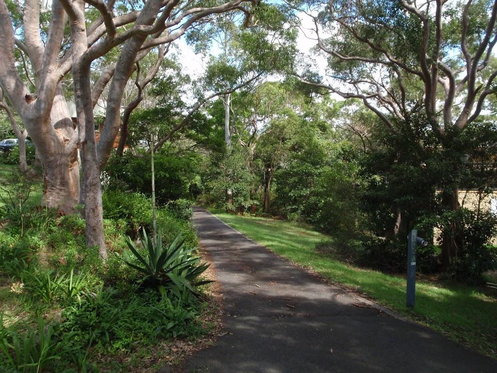 Sangrado Street (135049)