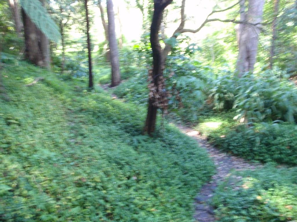 Little Digger track (135880)