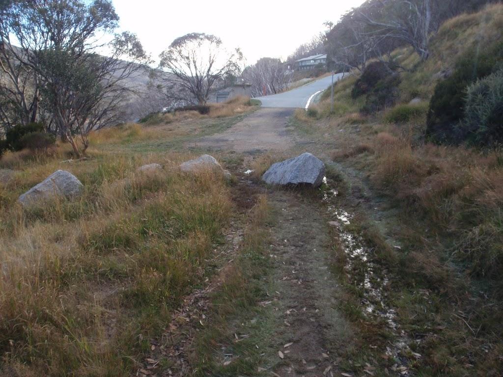 Guthega Rd service trail (138153)