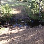 Creek at campsite