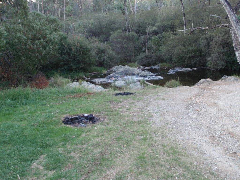 Campsite near creek