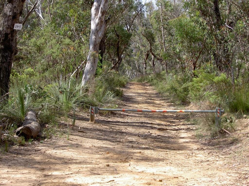 McNicol Service Trail