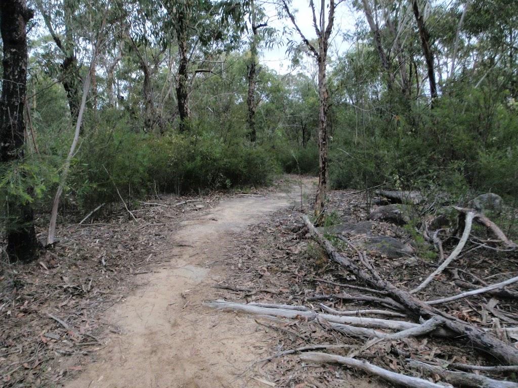 Pisgah Rock Track