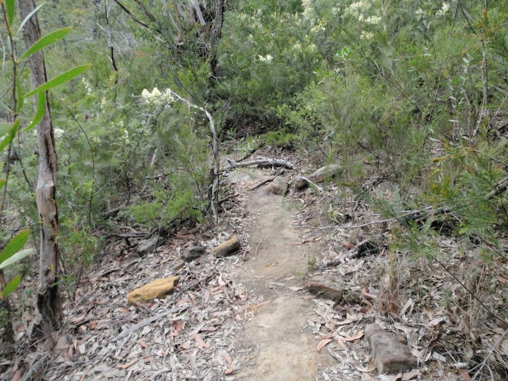 Track to Attic Cave