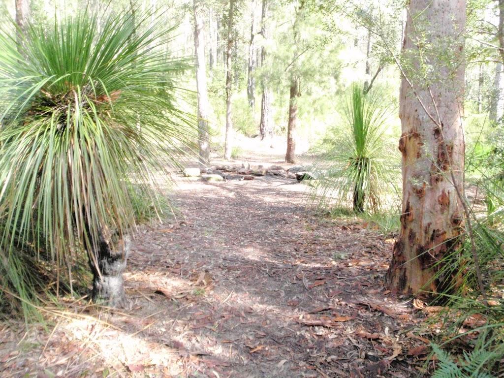 Near Campsite (144102)