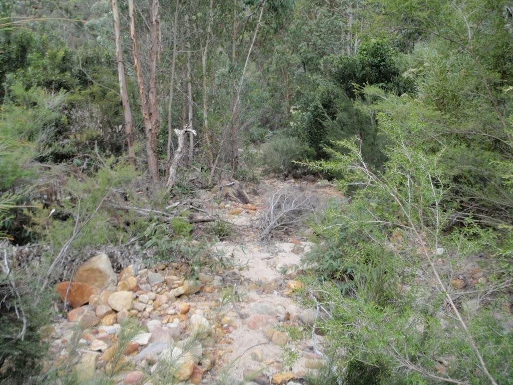 Track beside Erskine Creek