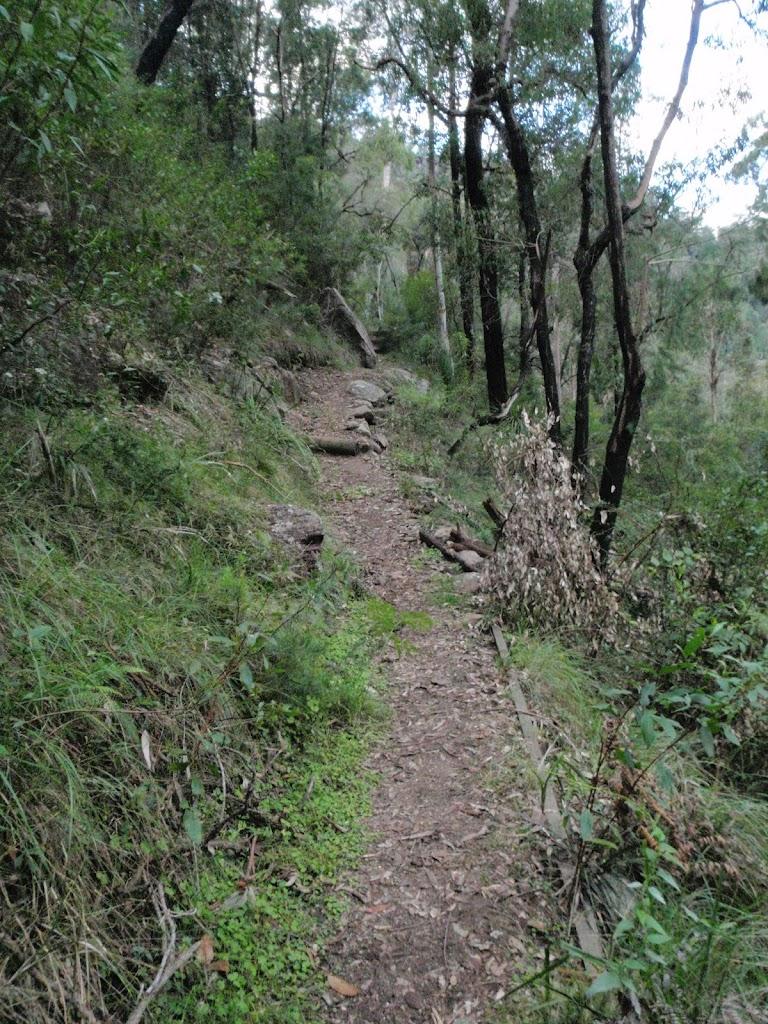 Jack Evans track