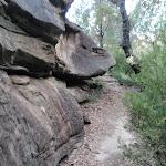 Rock wall near Erskine Lookout (144813)