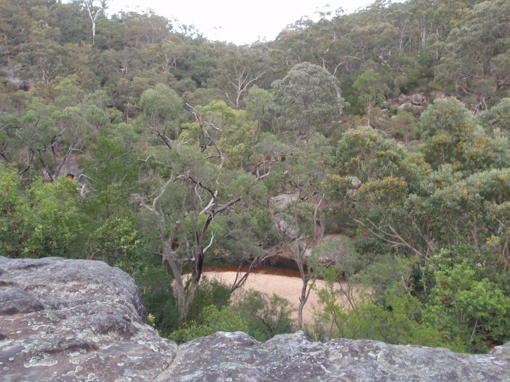 Looking down to Glenbrook Creek from near car park (144972)