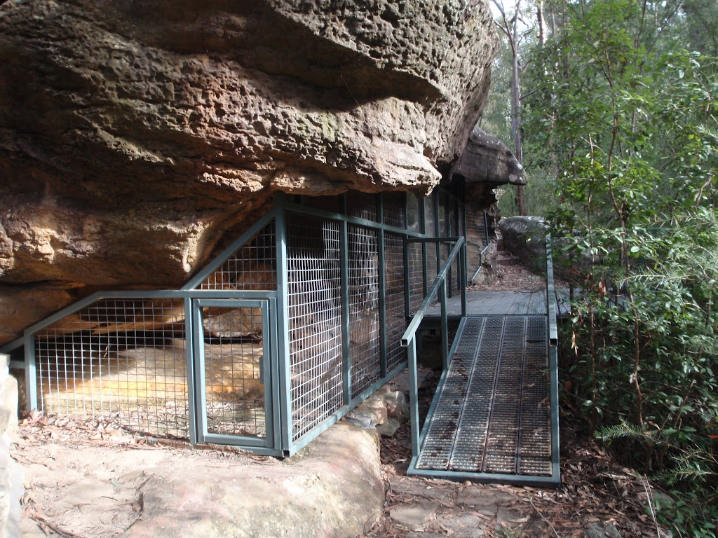 Red Hands Cave protective cage
