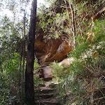 Track beneath cliffs (145602)