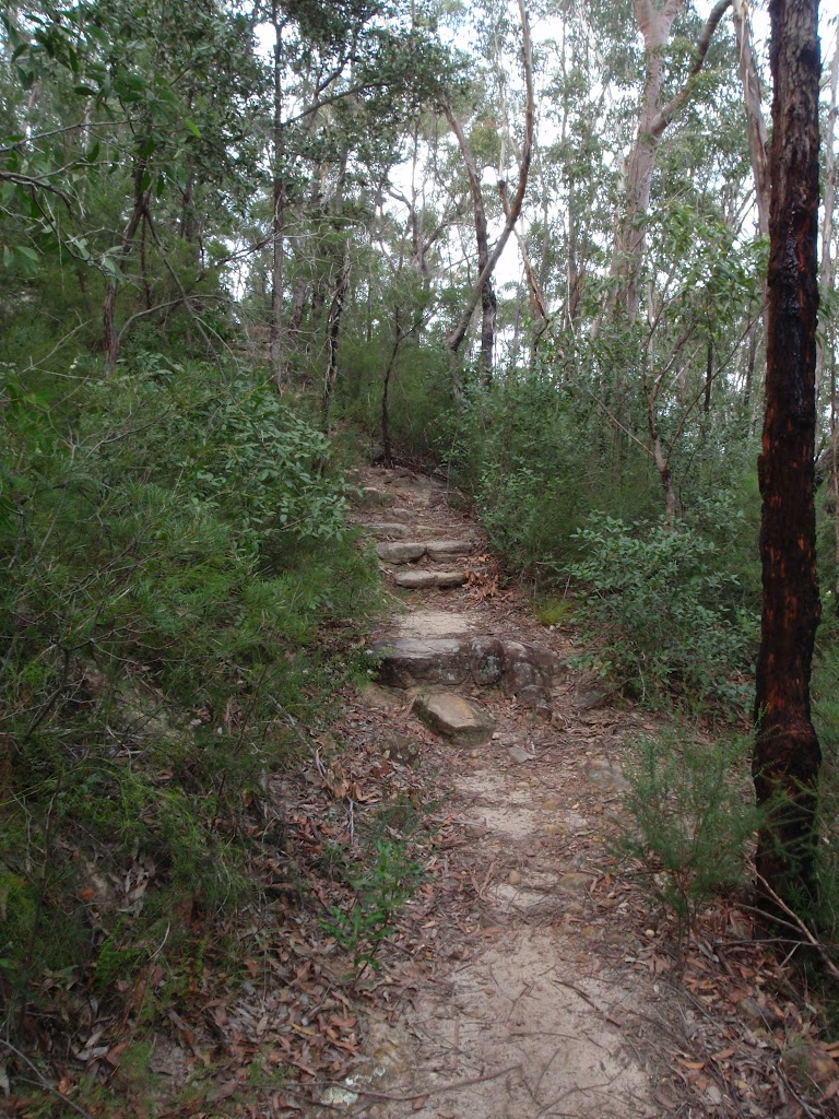 Track up to Lawsons Lookout