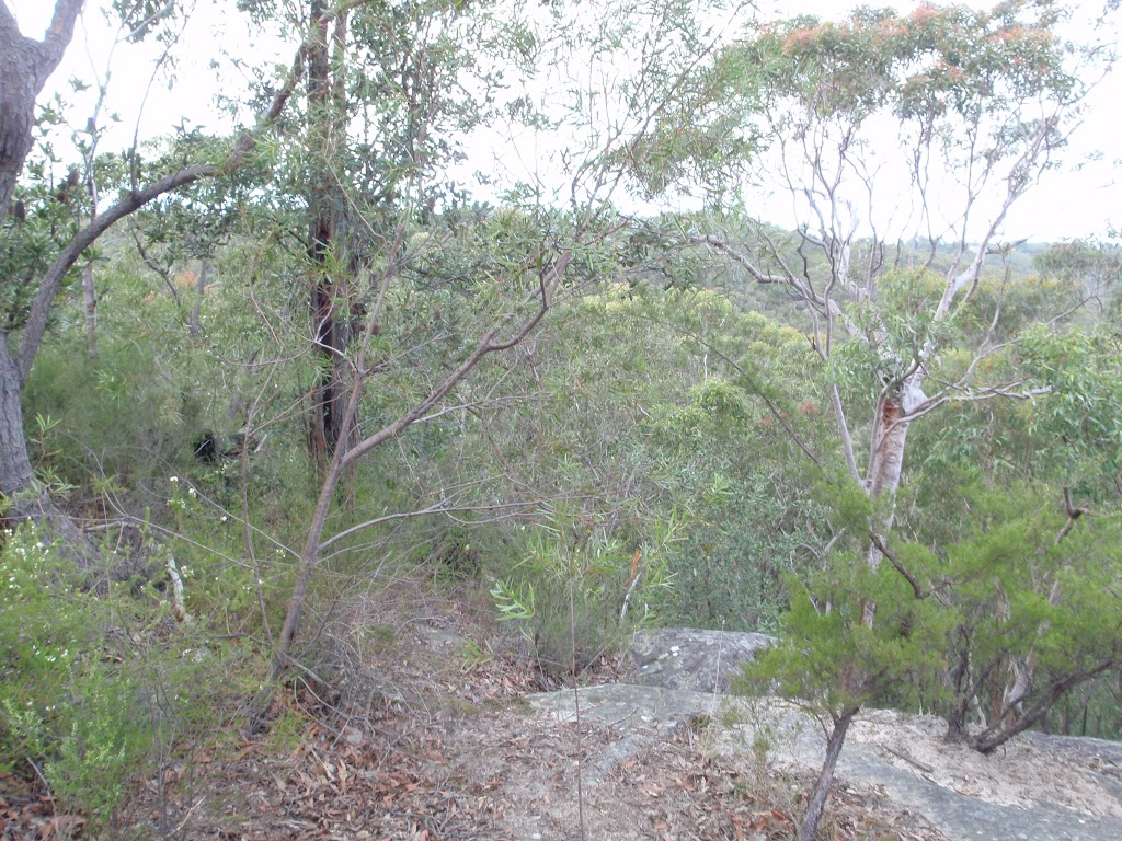 Track near Lawsons Lookout (146403)