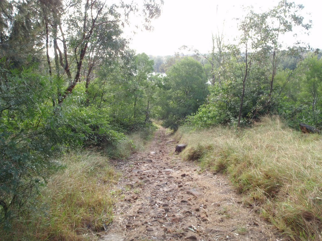 Trail down the hill to Nepean River (146646)