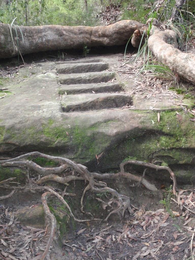 Rock cut steps