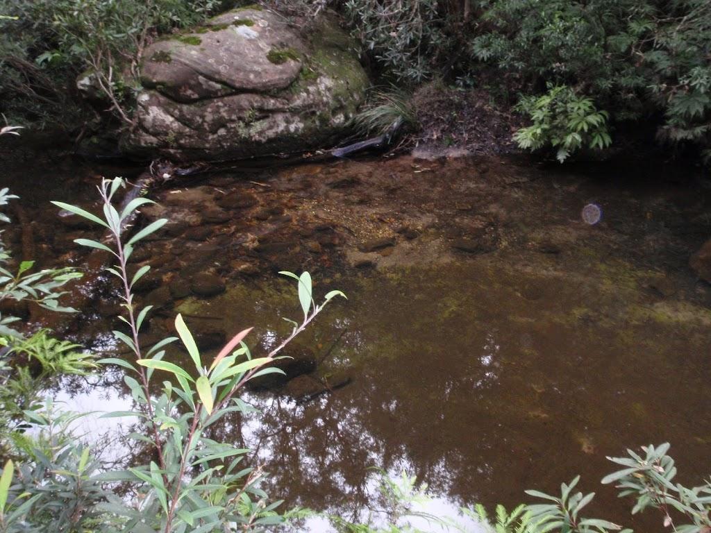 Clear pool in Magdala Creek