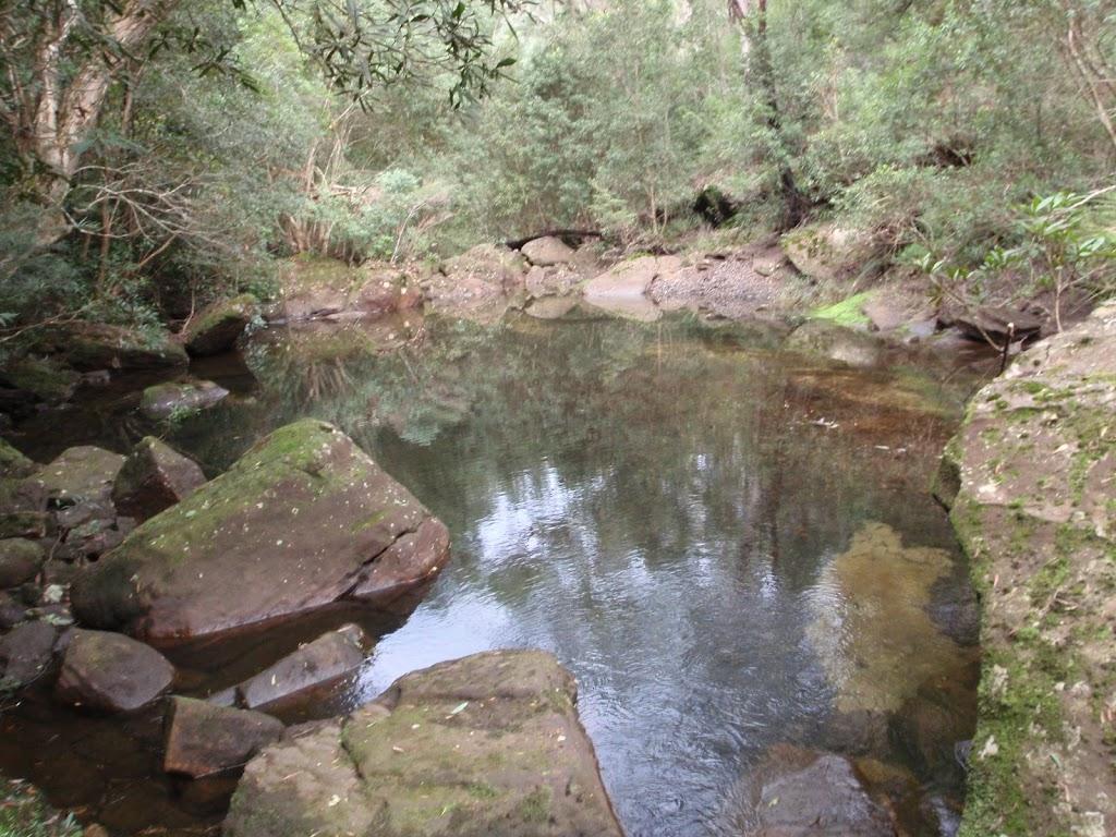 Pool in Sassafras Creek