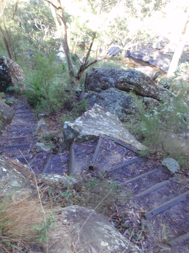 Steps on Glenbrook Gorge Track