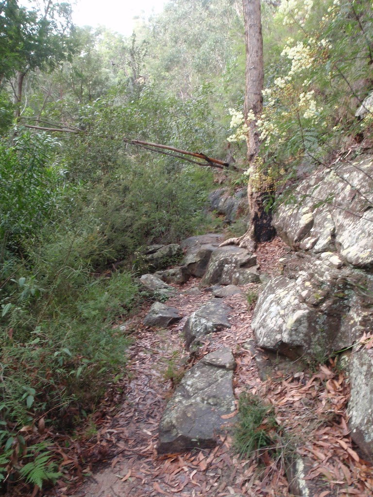Rock walls in bushland near Blue Pool Track (148242)