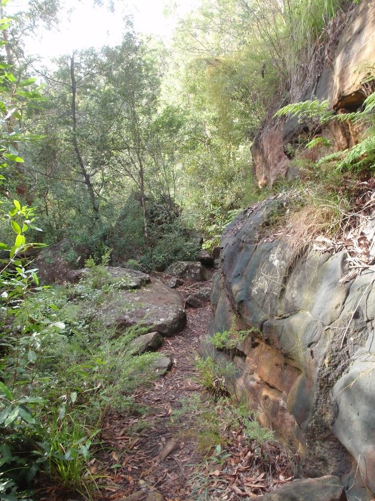 Track below cliffs