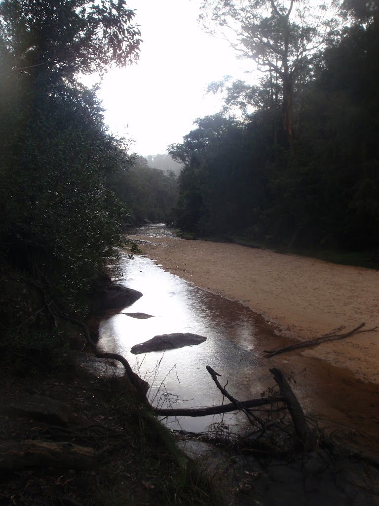 Rain setting in on Glenbrook Creek (148323)