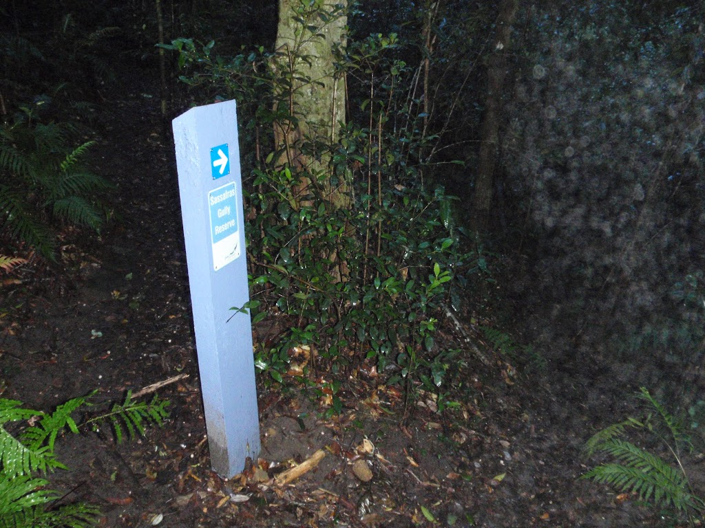 Arrow marker along track (148746)