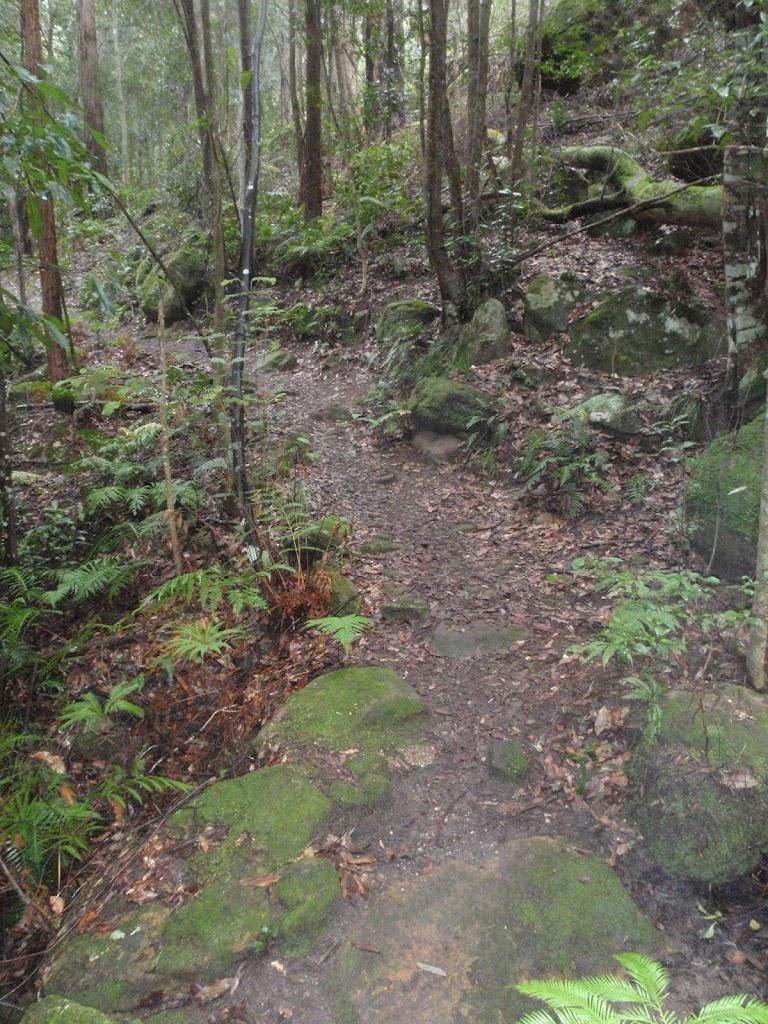 Track down towards Clarinda Falls