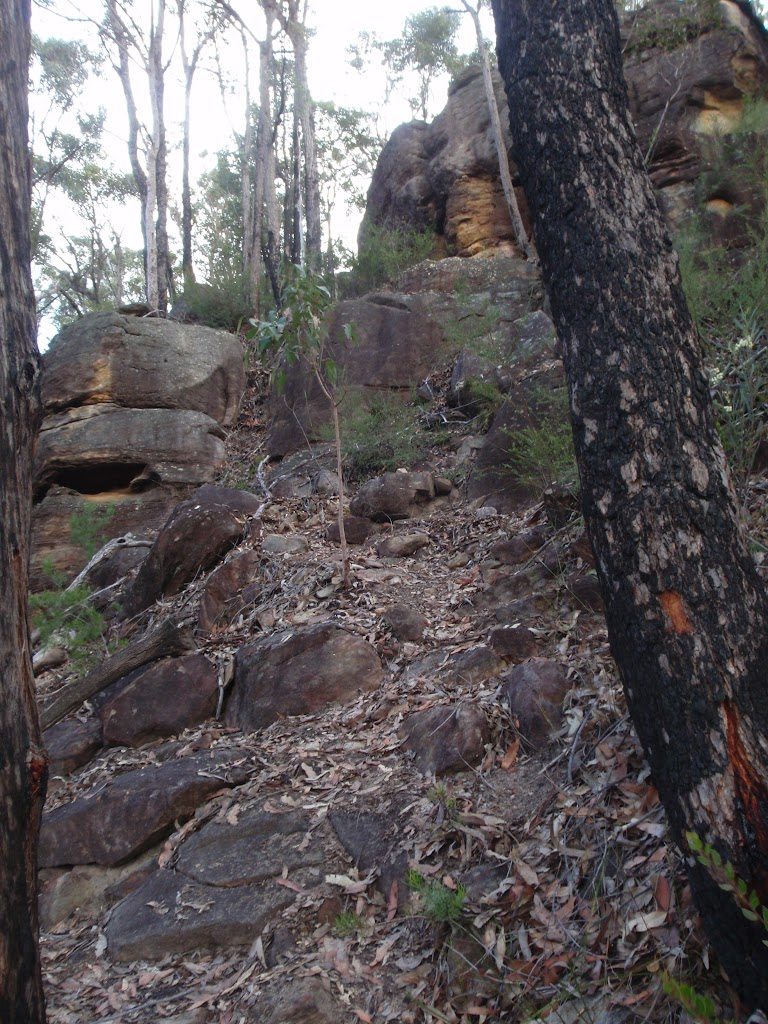 Track up to St Helenas lookout