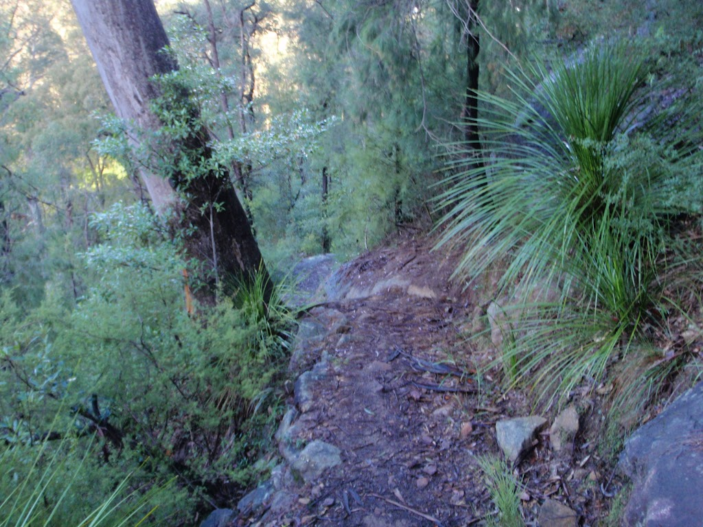 Jack Evans track rounding steep gully