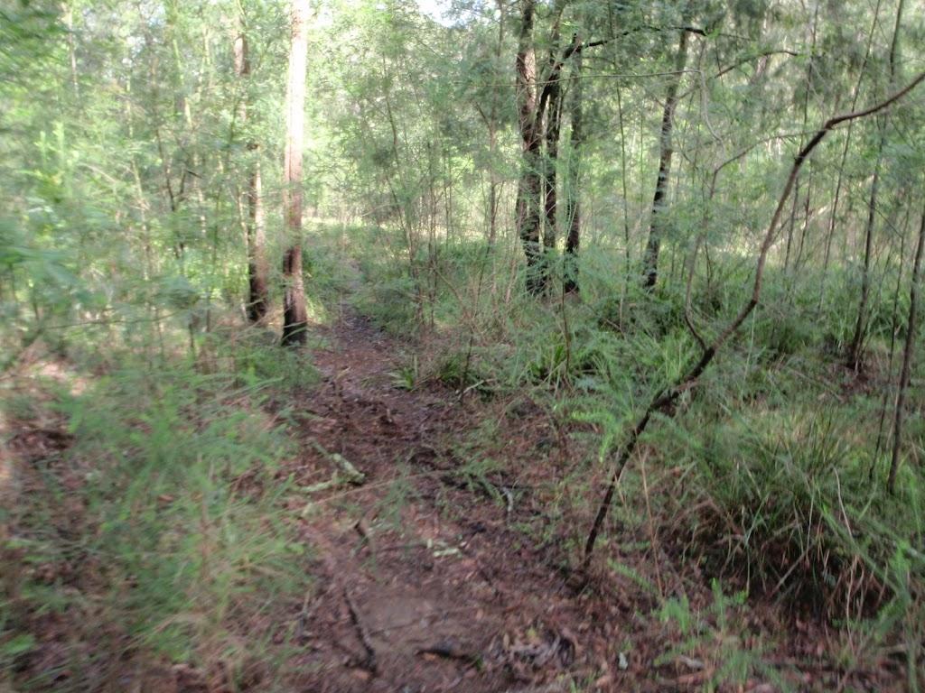 Machins Crater track