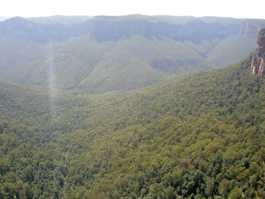 Grose Valley from Govetts Leap Lookout