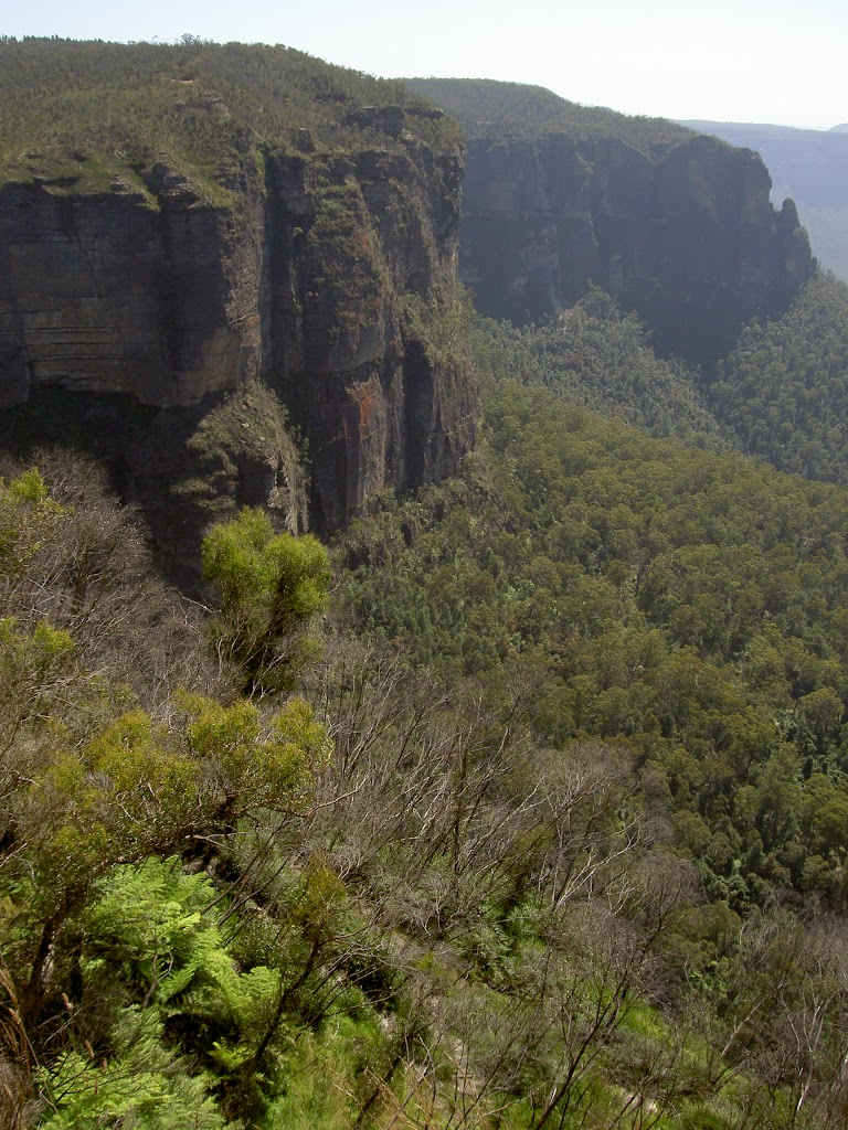 View from Govetts Leap Lookout (15100)
