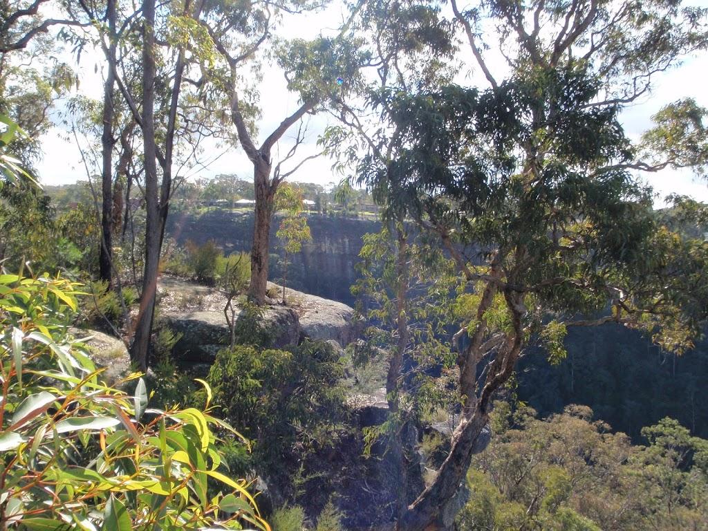 Bush views at Mount Portal Lookout (151356)