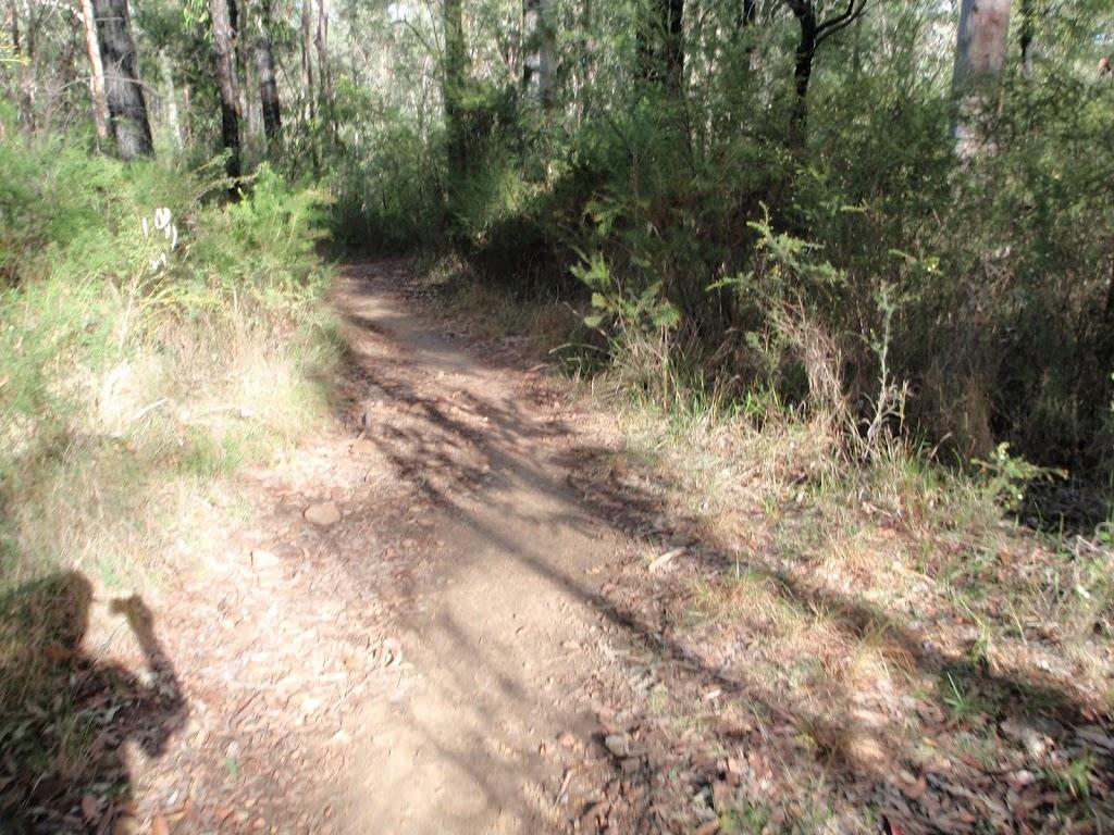 Oaks Cycleway