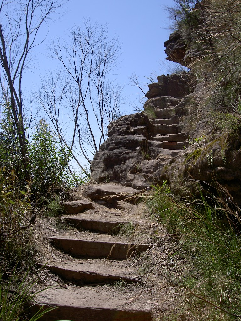 Cliff Top Track stairs (15166)