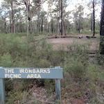 Ironbarks Picnic Area (151683)