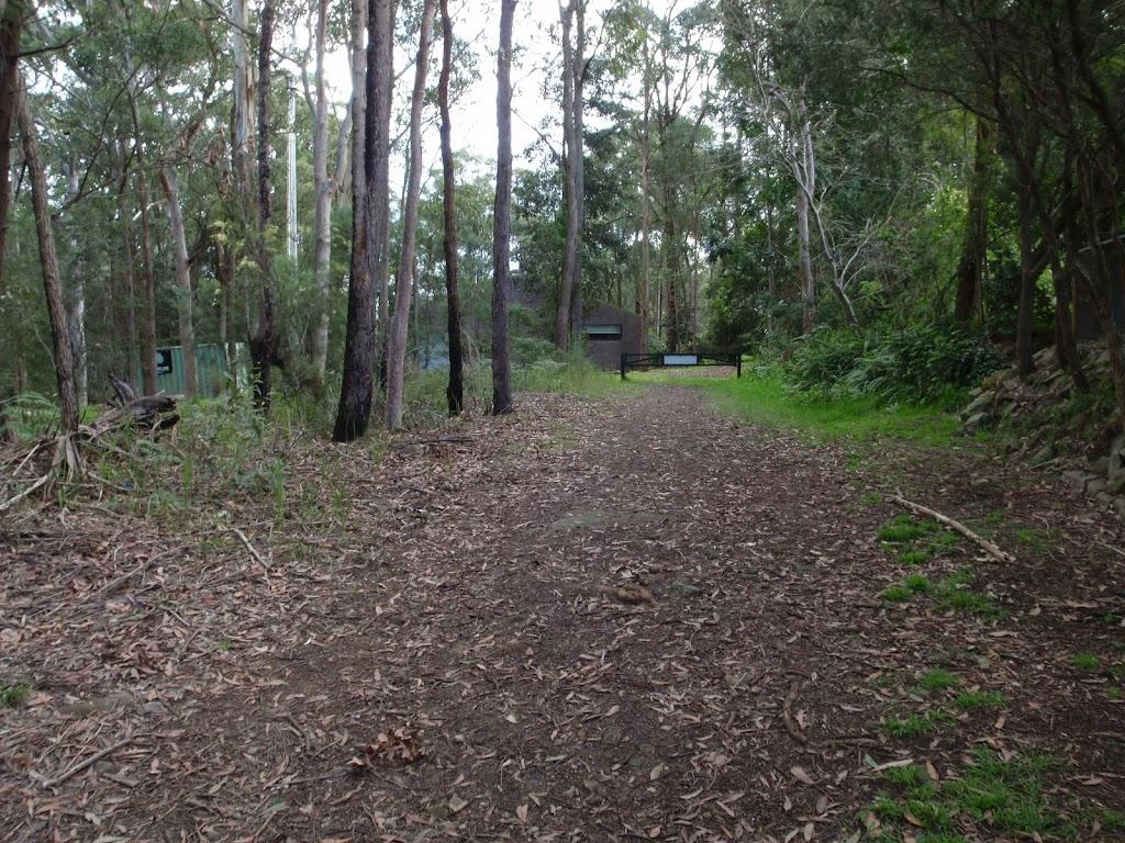 Blackwattle trail