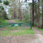 Blackwattle Trail gate behind Cherrybrook RFS (152665)
