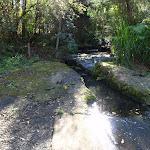 Disturbed creek crossing (152800)