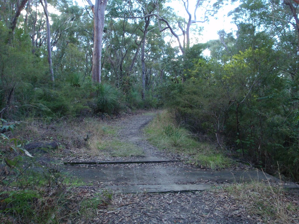 A small causeway on the Blackwattle trail (152905)