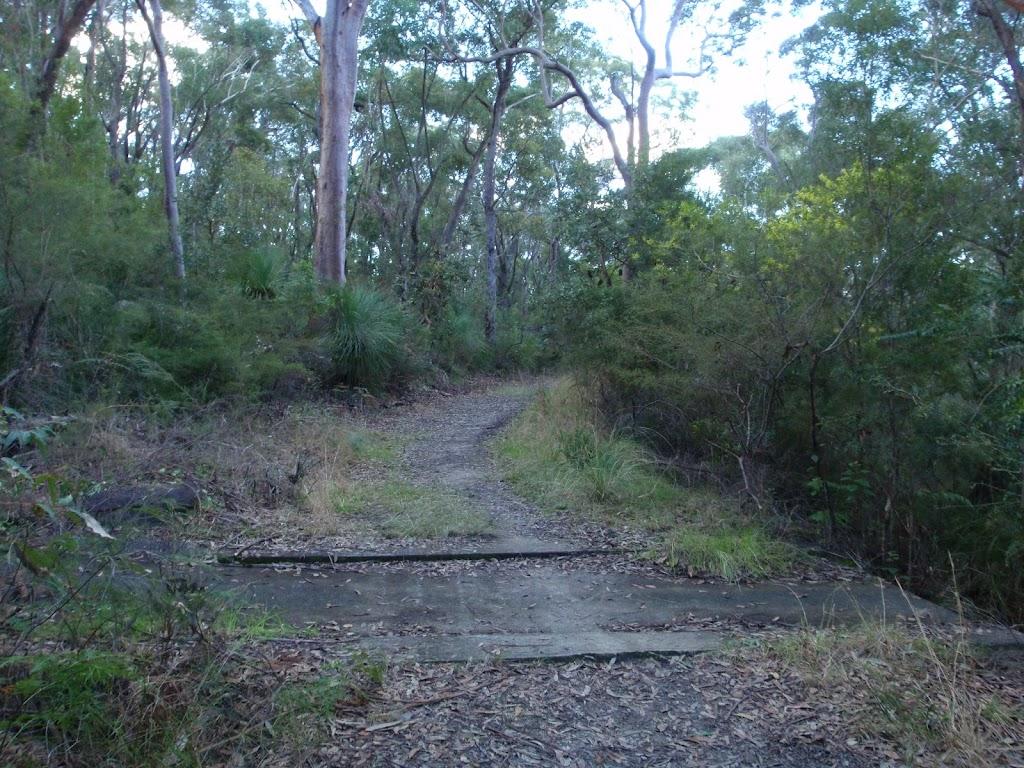 A small causeway on the Blackwattle trail