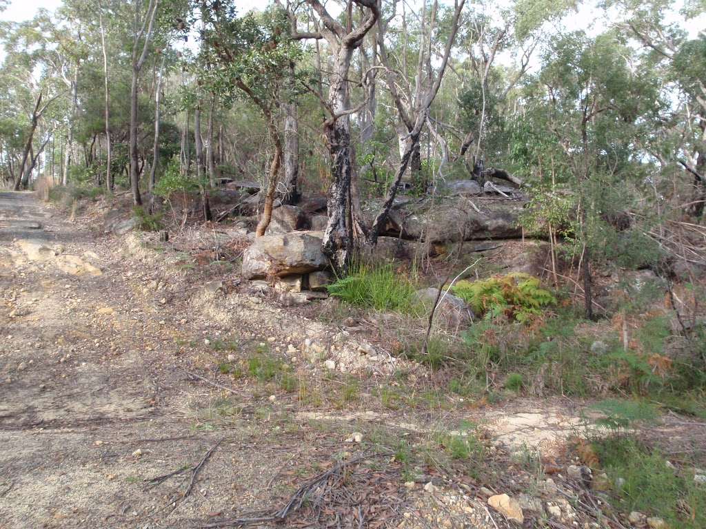 Rock and forest on Stringybark ridge