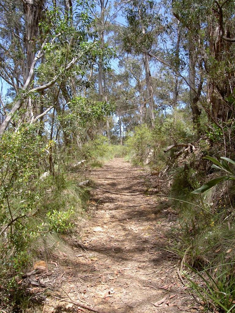 Pope's Glen Track